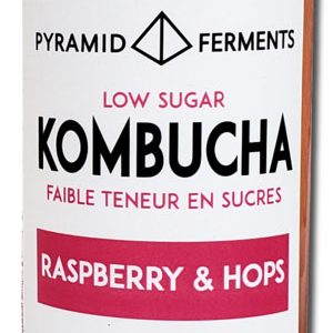 Pyramid Ferments Kombucha with raspberry + hops
